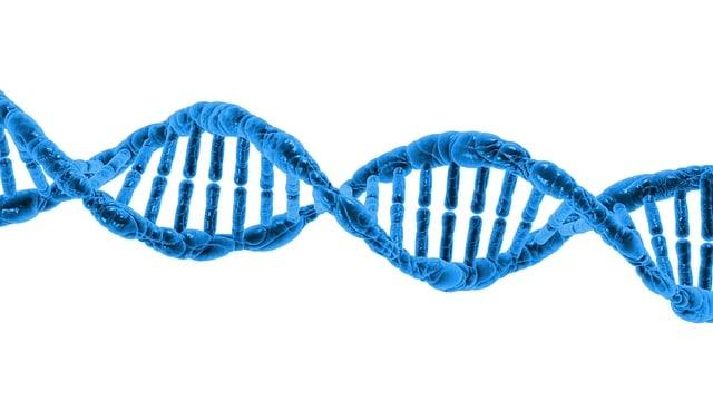 Dvije trećine pojave raka ne mogu se izbjeći unatoč zdravom načinu života