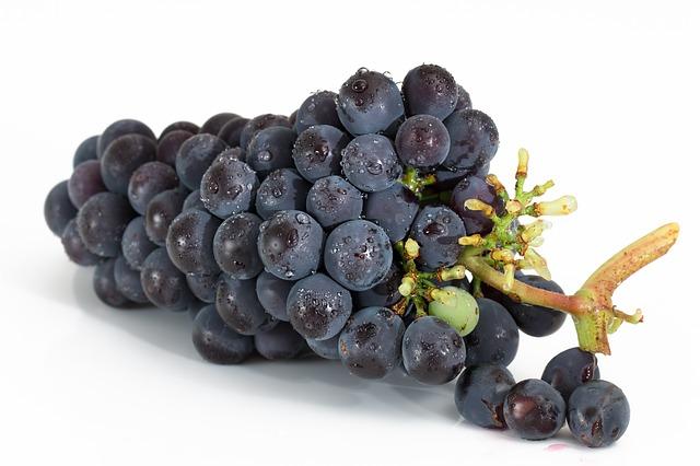 Crno vino povećava rizik od razvoja raka