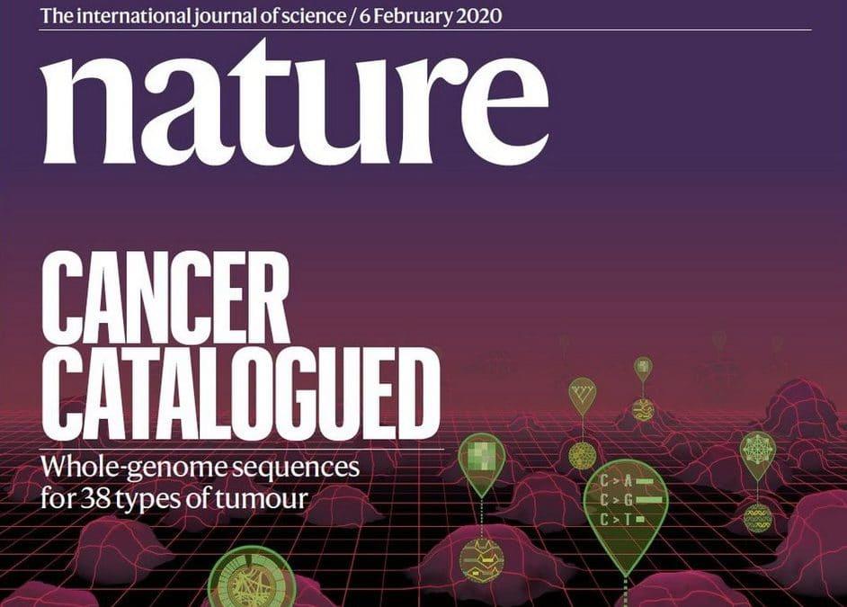 Maligna bolest počinje s četiri ili pet temeljnih mutacija na genima